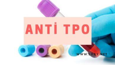 Anti TPO Nedir? Anti TPO Yüksekliği - Belirtileri ve Tedavisi