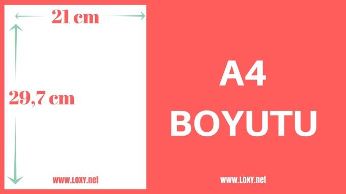 A4 Boyutu