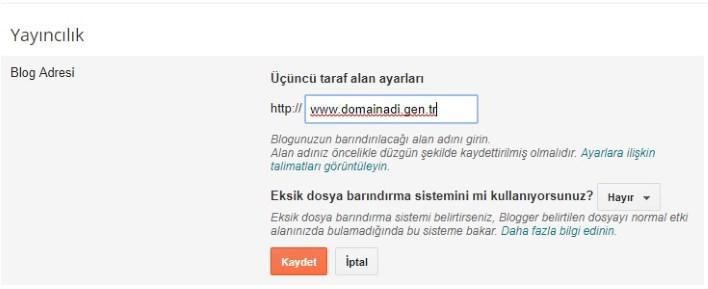 bloggera domain ekleme